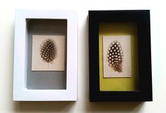 Spotted Guinea Fowl feathers in a black frame with gold / yellow background and white frame with grey / silver background ------ Gestipte Parelhoenveren in een zwart lijstje met goud-gele achtergrond en een wit lijstje met grijze / zilveren achtergrond - SOLD -