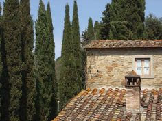 Tuscan roof tops