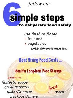 Easy Food Dehydrating ... in 6 Simple Steps! Packed full of info for drying almost everything