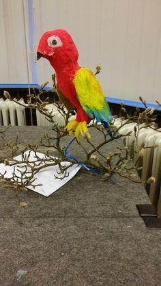 Parrot, Bird, Animals, Parrot Bird, Animales, Animaux, Birds, Animal Memes, Animal