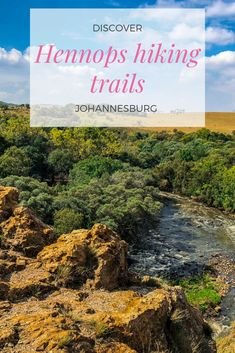 The Krokodilberg trail at Hennops hiking trails is a picturesque hike, conveniently within an hour's drive of Johannesburg. It is a great way to get out of the city for a few hours and see the countryside. Hiking Trails, Walks, Countryside, Wander, South Africa, Wildlife, River, Explore, Beautiful