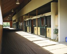 This is an interesting barn design at EMO Stables...there is a track around the inside perimeter of the barn for working racehorses...this is a design I've seen most often with driving horse barns