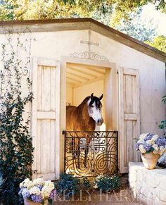 repurposed iron gate & shutters | Kelly Harmon. Love this, now I just need a horse & barn!!!!