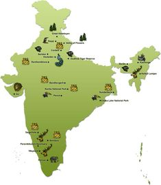 Know Difference between National Park and Wildlife Sanctuary, what is a Wildlife Sanctuary, List of famous National Parks and Wildlife Sanctuaries in India Gernal Knowledge, General Knowledge Facts, Knowledge Quotes, Bergen, Ias Study Material, Wildlife Of India, Teaching Geography, World Geography Map, National Parks Map
