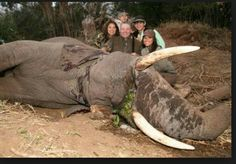 This wealthy family paid to have a female elephant killed while she was eating. Rich Family, Happy Family, Rare Species, Endangered Species, Species Extinction, Horrible People, Evil People, Cruel People, Stupid People