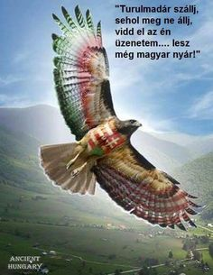 """Aquila non captat muscas.""/ A sas nem vadászik legyekre. Fantasy World, Fantasy Art, Runic Writing, Hungarian Tattoo, Hungary History, Red Raven, Biker Tattoos, Folk Fashion, World History"