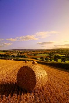 Devon Haybales Metal Print By Neil Buchan-grant Country Farm, Country Life, Beautiful World, Beautiful Places, Beautiful Scenery, Fields Of Gold, Devon And Cornwall, Dartmoor, English Countryside