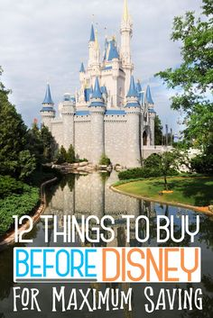 12 Disney World Essentials to Buy BEFORE Disney to Maximize Savings - A Disney vacation is in your future. Maybe this is your first trip, maybe it's your tenth, but the - Disney On A Budget, Disney World Vacation Planning, Walt Disney World Vacations, Disneyland Trip, Disney Planning, Disney Vacation Surprise, Disney Souvenirs, Voyage Disney World, Disney World Trip