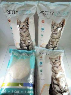 Diamante Velvet Adjustable Kitten Safety Collar With Bell Made By Posh Petz/® Raspberry Pink