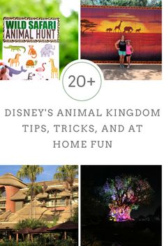 Disney's Animal Kingdom and Disney's Animal Kingdom Lodge ~ Tips, Tricks, and Must Dos for your next visit to Disney's Animal Kingdom Park. Animal Kingdom Restaurants, Disney Animal Kingdom Lodge, Disney Vacations, Disney Trips, Disney Travel, Family Vacations, Cruise Vacation, Family Travel, Disney Cast