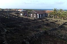 Terceira, la isla violeta de las Azores, Portugal