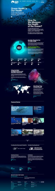 Unique Web Design, Ocean Health Index #WebDesign #Design (http://www.pinterest.com/aldenchong/)