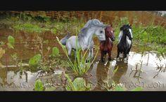 Google Image Result for http://fc00.deviantart.net/fs71/f/2012/244/e/a/collecta_horses__2__by_schwarzwolfin-d5d5k6y.jpg