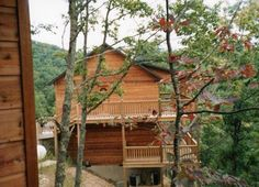 Cabin in the smoky mountains