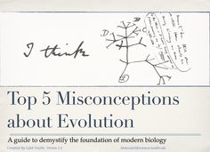 Top 5 misconceptions about evolution: A guide to demystify the foundation of modern biology.