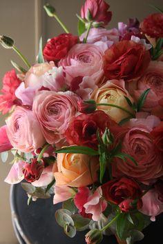 ranunculus,rose and sweet pea