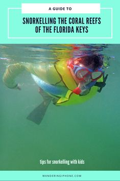 A guide to snorkeling the coral reefs of the Florida Keys.  Tips for snorkeling with kids.