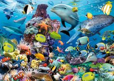 Underwater - Jigsaw Puzzle By Ravensburger (discon) Ravensburger Puzzle, Wild Life, Jewel Of The Seas, Fish Wallpaper, Room Wallpaper, Creation Photo, Wale, Sea Fish, Make A Person