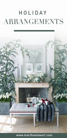 Create a serene winter-holiday tableau with this simple arrangement: birch bark wrapped around glass cylinders filled with plants found easily at this time of year.