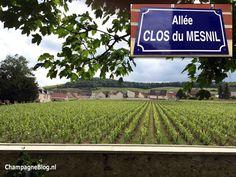 #Krug Clos du Mesnil #champagne #ClosDuMesnil #luxury #ChampagneBabes
