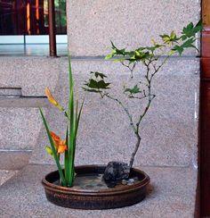 Nordic Lotus Ikebana blog