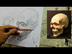 Обучение рисунку. Портрет. 19 серия: рисунок черепа в 2 ракурсах, 1 часть. - YouTube
