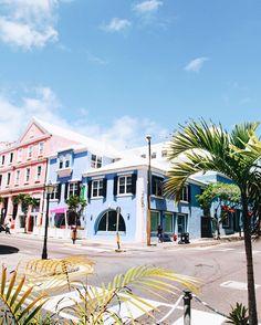 #wedding #dreamwedding #bermuda #island #islandmood #islandlife #islandstyle #honeymoon #travel #traveler #travelerslife #worldtravelerslife #beachwedding #palmtrees #beautifuldestination #vacation