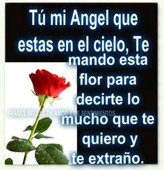 Tú mi angel...