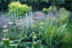 """""""Det gyldne snit"""" er en af Ellipsehavernes særhaver, med fortrinsvis gulløvede og gyldenblomstrende planter"""