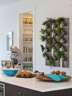Kitchen wall herb garden with mason jars and wooden plack.. would be an intresting DIY project.. It would be nice tovhave fresh herbs to cook all the time..