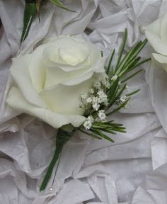 White rose button holes with rosemary and gypsophila, very pretty.