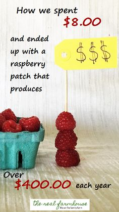 how much are YOUR raspberries worth?