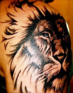 http://www.bing.com/images/search?q=lion tattoo on arm