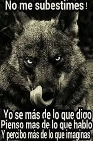 Resultado de imagen para lobo frases