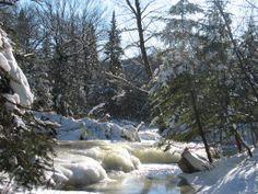 L'hiver dans le parc de la Jacques-Cartier