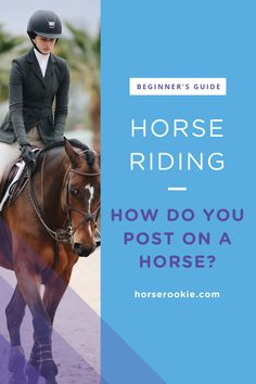 How to ride a horse for beginners (basics, safety, mistakes) Horse Riding Tips, Horse Riding Clothes, Trail Riding, Horse Tips, Mounting A Horse, Westerns, George Morris, Horseback Riding Lessons, Horse Barns