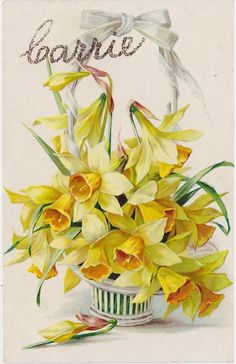 daffodils, in basket with white ribbon at top of handle, one bud on table