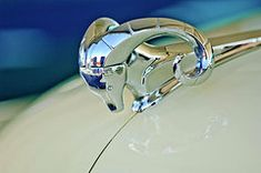 Vintage Hood Ornaments Photos - 1952 Dodge Coronet  Diplomat Club Coupe Hood Ornament by Jill Reger