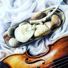 Umysł i ciało wołają o urlop ale jedyne co mogę zrobić to pomyśleć gdzie się wybierzemy latem  Polecicie jakieś sprawdzone wakacyjne miejsce najlepiej nad morzem (niekoniecznie Bałtyk )?    Just dreaming about holidays...  _______________________ #violin   #violino   #violinist   #violingirl   #violinlife   #violinlove   #geige   #fiddle   #skrzypce   #muzyka   #skrzypaczka   #artist   #art   #luthier   #seashells   #dreaming   #whitebackground   #bestmusicshots   #musicphotography…
