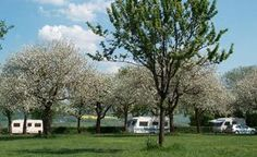 Camping Oosterberg Zuid Limburg, groepskamperen in het Geuldal Epen, Kampeerterrein Heuvelland Zuid-Limburg