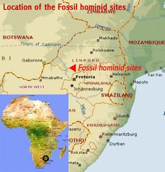 Early Hominids Lucy | Map showing the location of the Fossil Hominid Sites of Sterkfontein ...