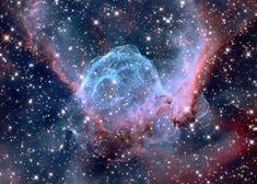 Туманность NGC 2359 «Шлем Тора» в созвездии Большого Пса, находящаяся в 15 000 световых годах от Солнца.