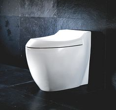 Silverdale's Windsor Back to wall WC pan