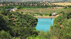 #Alentejo eleito a melhor região de vinhos do mundo para se visitar