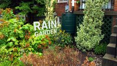 Design and Build a Rain Garden for Your School or Community