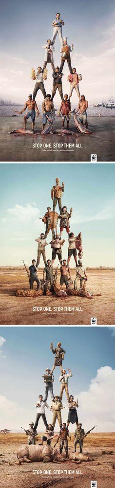 Stop one. Stop them all. #WWF #KillTheTrade
