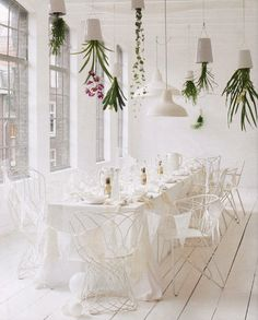 The hanging Sky Planter flower pots by Boskke.Like the pots- needs some colour!