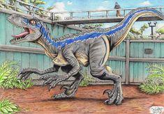 Jurassic World - Blue by Tadeu-Costa.deviantart.com on @DeviantArt