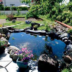 Drømmer du om en egen hagedam? Her kan du lese om at du må tenke på når du skal bygge din egen dam i hagen.