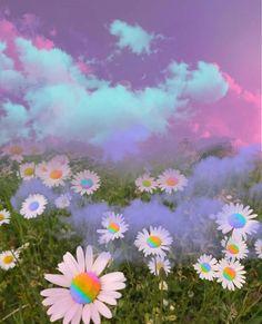 Rainbow Aesthetic, Nature Aesthetic, Flower Aesthetic, Rainbow Wallpaper, Galaxy Wallpaper, Wallpaper Backgrounds, Aesthetic Pastel Wallpaper, Aesthetic Backgrounds, Aesthetic Wallpapers